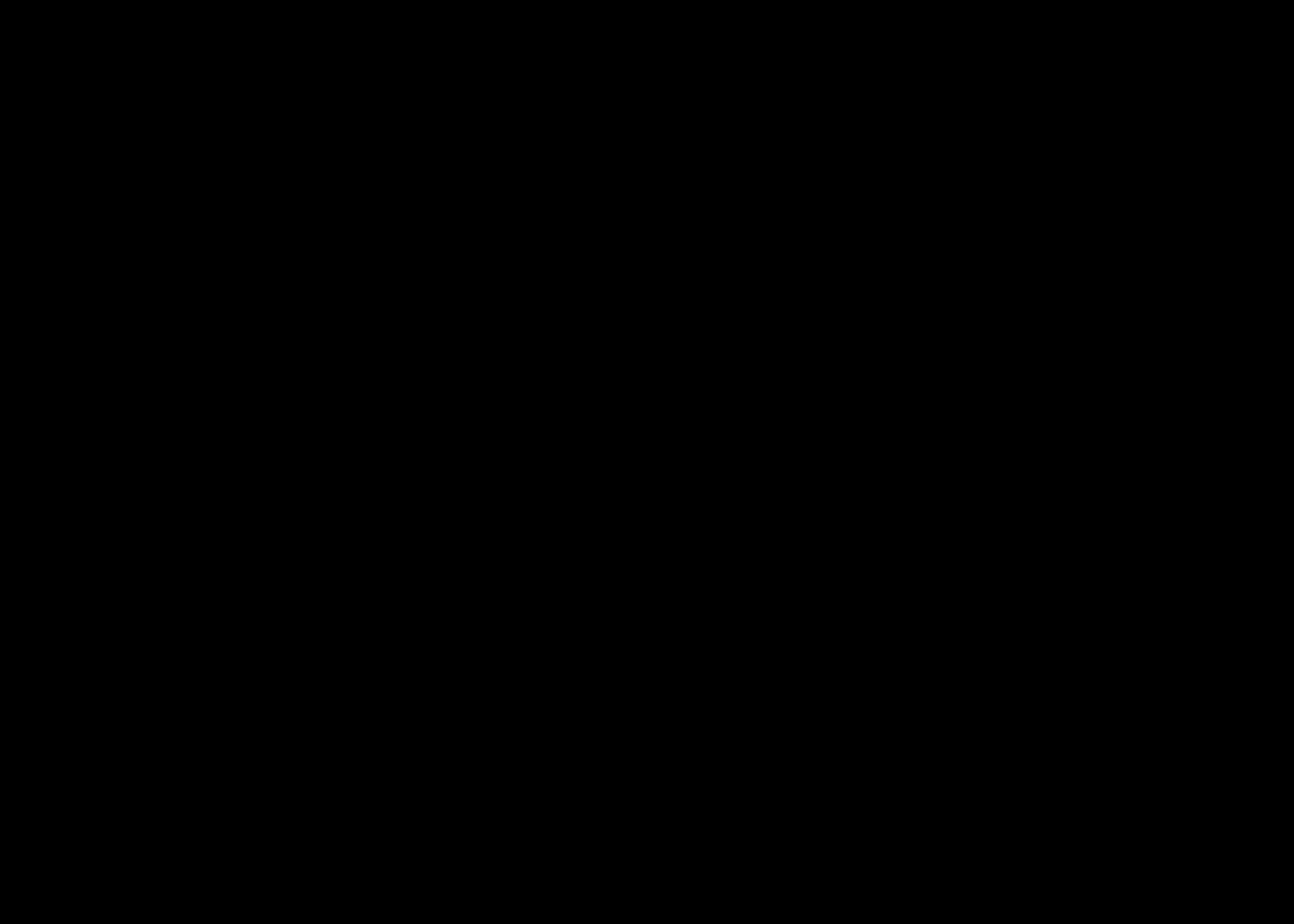zwart